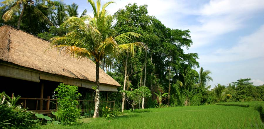 Ubud Cottages