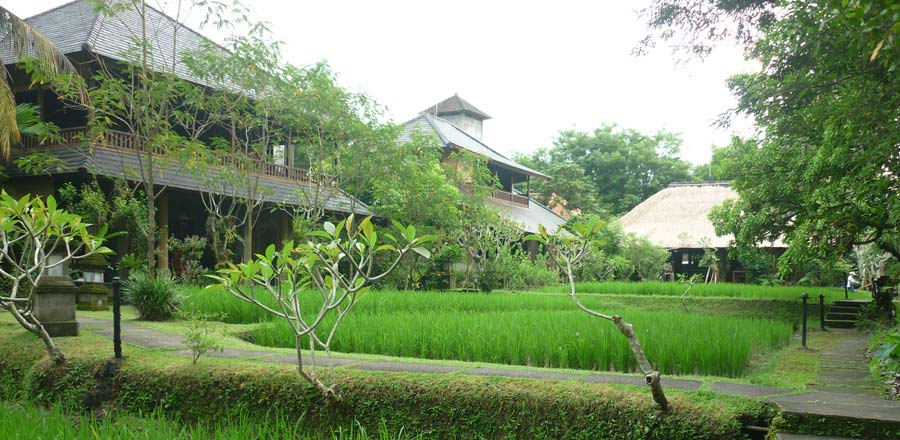 Spa in Ubud